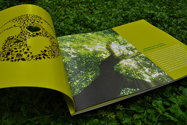 Verso Sustainability Report 2010